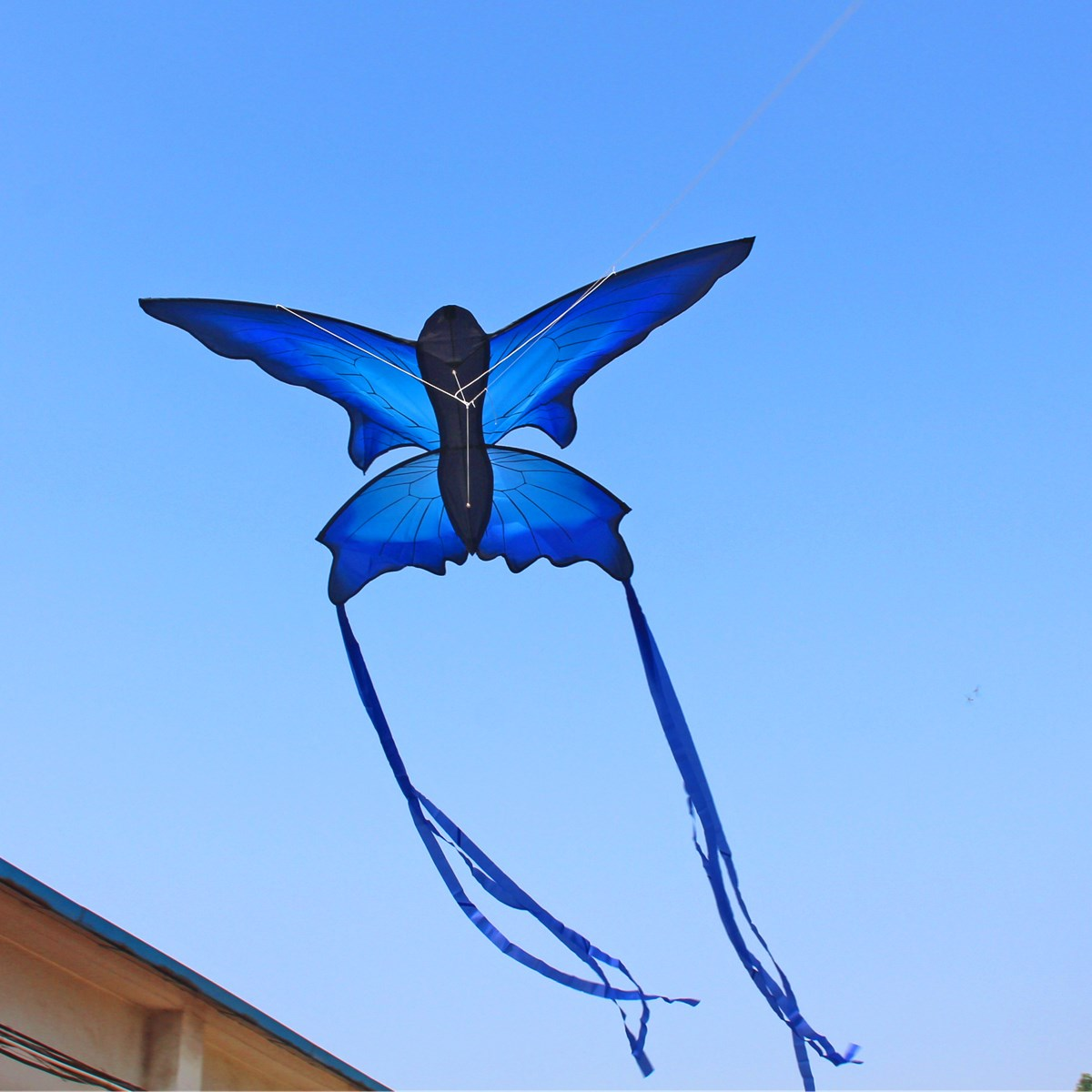 e86e6ff7cbdc 70x150cm Blue Beautiful Butterfly Kite Outdoor Fun Sports Flying Toy With  30M Control Bar and Line