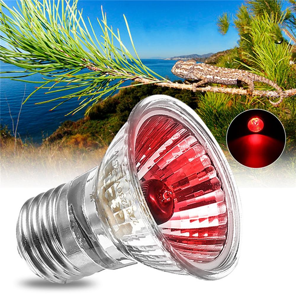 AC220V E27 25W Amphibian Bird Snake Heat Reptile Bulb Light Red Heating Lamp