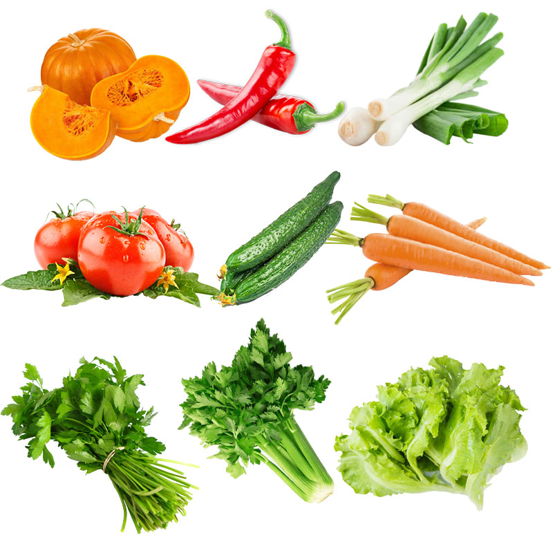 Egrow 10 Kinds Mixed Vegetable Seeds Real Green Non-gmo Organic Vegetable Seeds Edible Planting
