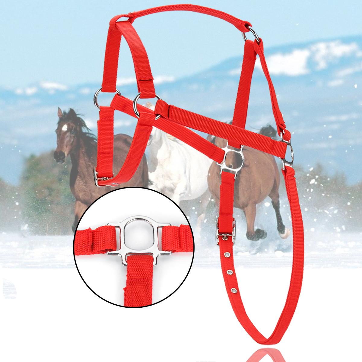 NylonЛошадьHarnessHalterкрасныйHorsing Riding Регулируемая для Pony Spors Конные принадлежности