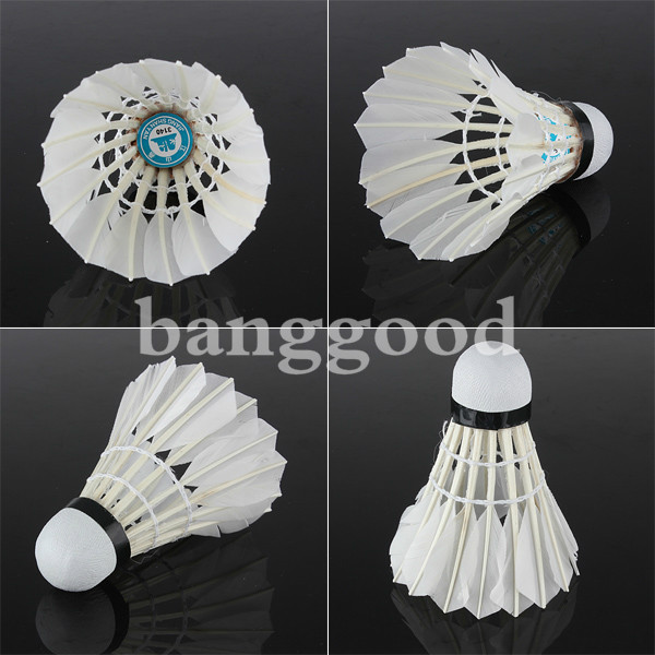Durable Training Sport White Feather Badminton-Balls Game Match Shuttlecocks x 6