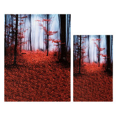 Silk Dawn Mangrove Forest Photo Booth Background Wallpaper Photography Backdrop
