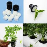 Siyah Plastik Hasır Pot Hidroponik Aeroponic Bitki Net Büyümek Bahçe Çiçek Klonu