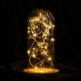 9 * 20 cm Cam Dome Çan Kavanoz Cloche Ekran Peri LED Işıkları Süslemeleri Ile Ahşap Taban