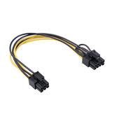 REXLIS 6 broches femelle à double 8 broches (6 + 2) câble adaptateur d'alimentation femelle 20 cm câble séparateur de carte graphique câble d'alimentation