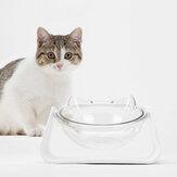 15 درجة قابل للتعديل 2 في 1 وعاء لإطعام الحيوانات الأليفة وعاء تغذية الكلب لتغذية أطباق الطعام أدوات المائدة يأجول القط الغذاء وعاء الماء