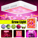 600W Full Spectrum LED Grow Light SMD3030 Grow Лампа для Hydroponic Растение + 2 вентилятора