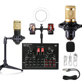 LEORY V8X PRO Ring Fill Light with Dual Phone Clip Holder Professional Sound Card Recording Condenser Microphone kit
