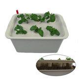 الأكسجين مصغرة 11 ثقوب ثقافة المياه الشتلات صناديق زراعة بلا عديمة زراعة صناديق