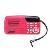 RoltonW105TragbareMini-FM-Radio-LautsprecherMusicPlayer Tf-Karte mit LED Anzeige und Taschenlampe