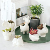 Ceramic Succulent Plant Container Flower Pot Planter Holder Vase Animal Shape Decorations