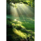 3x5ft Vinyl Spring Forest Sunshine Photography Backdrop Background Studio Prop