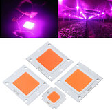 10W 20W 30W 50W 70W 100W LED Full Spectrum Plant Grow Light Chip DIY DC9-10V / DC20-32V