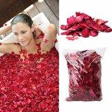Suszone płatki róż Natural Flower Spa Wybielanie prysznica Dry Rose Naturalne płatki kwiatów Relief Fragrant Body