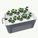 المنزلية 6 ثقوب الزراعة المائية صندوق الشتلات بدون تربة معدات زراعة آلي قطعة أثرية زهور