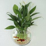 アクリル水族館の水槽の壁に取り付けられた植木鉢は花瓶の家の装飾を育てる