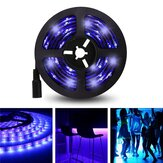 5M 3528SMD Non-waterproof UV Purple LED Strip Light with DC Connector DC12V