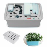 220V Soilless Hydroponic System Kit Indoor Aerobic Cultivation 24 Holes Water Planting Grow Box for Garden Planting