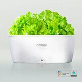 Onemi AI Intelligent Plant Growth Flowerpot Machine de plantation de légumes intelligente Mijia APP Système d'auto-arrosage à télécommande Analyseur d'humidité de la température
