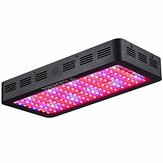 1200W Double Chips LED Grow Light Espectro completo Grow Lamp for Greenhouse Hydroponic Indoor Plants