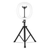 MZ-10 10 İnç Entegre Teleskopik Katlanır Canlı Dolgu Işığı 3 Işık Modu 10 Parlaklık Seviyesi Kısılabilir LED Makyaj Fotoğrafçılık için Halka Işık YouTube Vlog TIK Tok