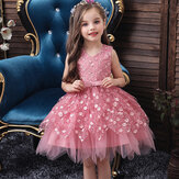 Girls Embroidery Mesh Sleeveless Bowknot Irregular Hem Party Dress
