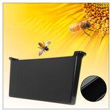 4L Plastik İç Bee Kovan Besleyici Çerçeve Tip Su Besleme Bee tutma Aletler Bal Bee için Set