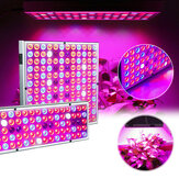 LED Grow Light Hydroponic Full Spectrum Indoor Plant Flower Groeiende Bloom Lamp 85-265V