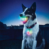 Yani Pet Dog Training Elektroniczny LED 7 Color Flashing Luminous Dog zębów szlifowania Ball Glitter Interactive Toy