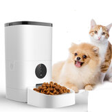 6L huisdiervoeder Wifi-afstandsbediening Smart Automatic Food Feeding With Rechargable