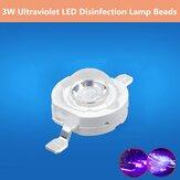 La lampe verticale de la puissance élevée 3W perle LED désinfectant l'intense luminosité