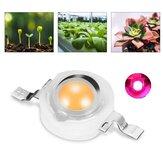 3.2V-3.4V 3W 380-840nm Full Spectrum Plant Growth LED Light Beads For Vegetable