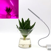 5V 2.5W 10 Red 4 Blue Portable USB LED Plant Grow Lamp for Home Office Garden Greenhouse
