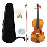Astonvillas AV-05 Natural Color Bright 4/4 Скрипка из ели и клена