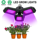 144 LED Grow Lights Panel Full Spectrum E27 LED Lampe de serre pour croissance des plantes