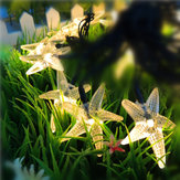 SSL-11 Gardening 6M 30LED solare Pannello String Light Starfish Holiday Party Decorazione di nozze