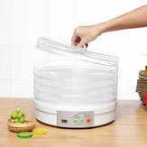 5 Tiers Electric Food Dehydrator Machine Fruit Dryer Beef Household Vegetable Pet Meat Materials For Air Dryer