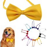 Разноцветные собачки Галстук-бабочка Шея Галстук Кот Галстук Товары для ухода за домашними животными