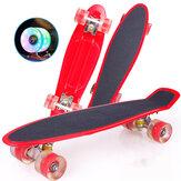 22 İnç Kaykay Mini Kruvazör Kurulu Balık Skate Board Yetişkin Çocuk Scooter Pastel Longboard Rulmanlar Flash Tekerlek