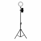16cm LED فيديو Ring ضوء 5500K Dimmable مع 160CM قابل للتعديل ضوء Stand for Youtube Tiktok Live Streaming