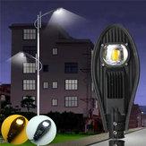 30 W LED Sıcak Beyaz / Beyaz Yol Sokak Sel Işık Outdoor Geçit Bahçe Yard Lamba DC12V