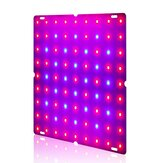 Ultra delgado 81 / 169LEDs Planta UV Grow Light Full Spectrum Veg Lámpara para interior hidropónico Planta Flor 110-240V