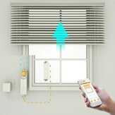 DIY Smart Chain Roller Blinds Shade Shutter Drive Motor Powered By APP Control Smart Home Automation Devices