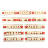 3 Set 84*1 A2 Color Denture Dental Acrylic Resin Teeth Upper + Lower Shade
