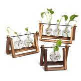 Mini Hanging Glass Tabletop Hydroponic Flower Pot Vase With Wooden Tray