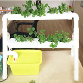 Mini 2 Layer 8 مواقع تربة مائية طقم Ebb & Flow Deep Water Culture DWC Grow Planting Vegetable
