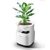 Nobico  J009 Mini Original Ecology Green Plant Air Purifier Air Detection Module 3 Layers Filter Air