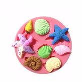 3D Silicone Cascas de mar Bolo de chocolate com molho de caracol de mar da estrela do mar Molho de chocolate Molho de bolacha Decoração