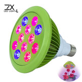 ZX Pflanze LED Grow Lampen Birnen Garten Gewächshäuser Pflanzensprössling Licht E27 12W 24W