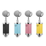 RITASC RR-1606 Live Microphone Recording Microphone Condenser Microphone